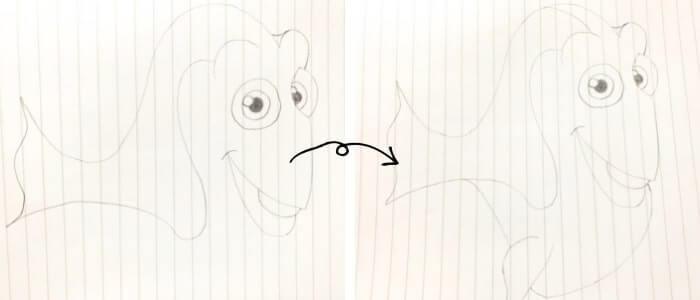 ドリー(ファインディング・ニモ)のイラストの描き方4